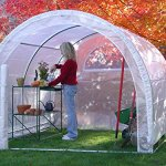 Greenhouse-Weatherguard-Walk-In-Arched-Top-Garden-Hot-House-Fully-Enclosed-Screend-Windows-for-Ventilation-Zippered-Door-6W-x-12L-x-66H-Small-Hobby-Greenhouse-for-large-decks-patios-porches-backyards-0-1