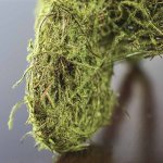 Large-Moss-Covered-Metal-Wheelbarrow-for-Embellishing-Displays-Crafting-and-Creating-0-1