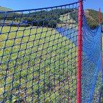 V-Protek-5x30ft-Plastic-Poultry-Fence-Poultry-NettingChicken-Net-Fence-For-Flower-Plants-SupportBlue-0-1