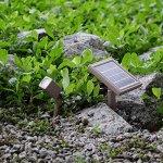 HEX-30X-Twin-Solar-Spotlight-Warm-White-LED-for-Outdoor-Garden-Yard-Landscape-Downlight-0-2