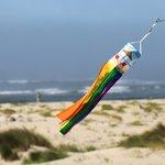 In-the-Breeze-Beach-Scene-15-inch-Babysoc-Printed-Mini-Windsock-Hanging-Decoration-12-PC-0-0