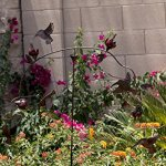 Super-Unique-Hummingbird-Balancer-Kinetic-Sculpture-Perfect-Gift-Idea-for-Hummer-Lovers-0-0