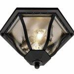 Trans-Globe-Lighting-8-12-Inch-2-Light-Outdoor-Flushmount-0