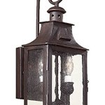 Troy-Lighting-Newton-Light-Outdoor-Wall-Lantern-Old-Bronze-Finish-with-Clear-Seeded-Glass-0