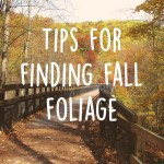 The best way to find fall foliage