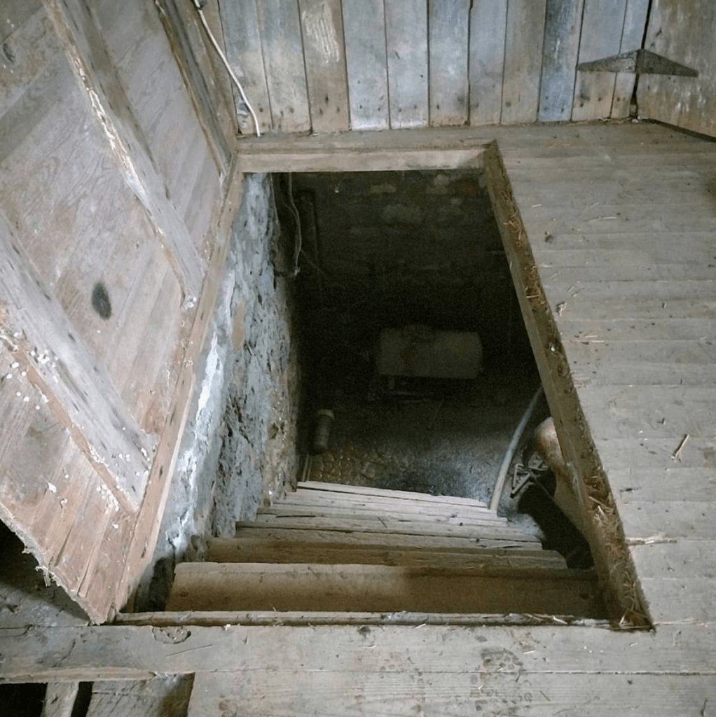 root cellar door