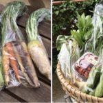 有野実苑野菜パック、山武応援パックを発送しました(2020年05月16日)
