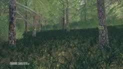 placeable-skidtrail-trees-v1-0-0-0_9_FarmingSimulatorNET