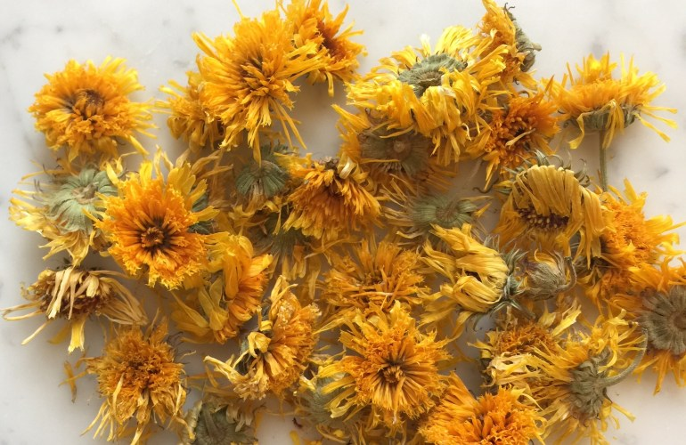 Dried calendula flowers diy for oil infusions and healing herb salve