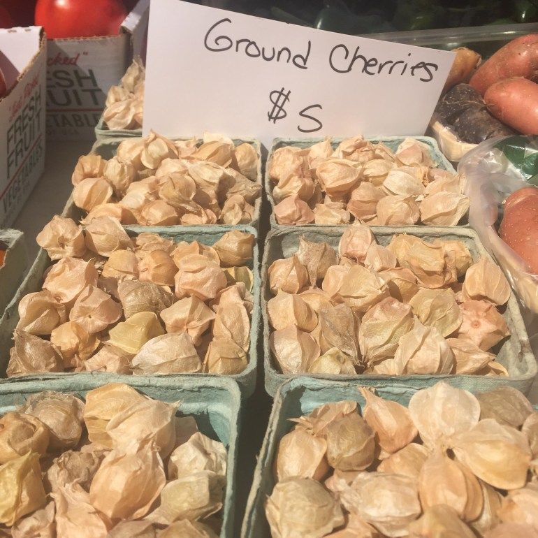 rb-ground-cherries