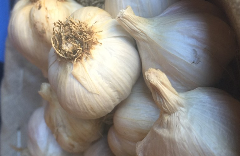 garlic cloves in a basket at Off Center Farm Stand Woodbridge
