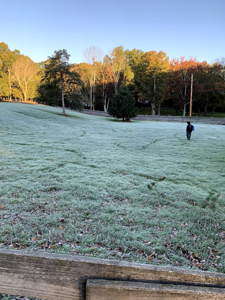 Boy walking through a frosty New England field