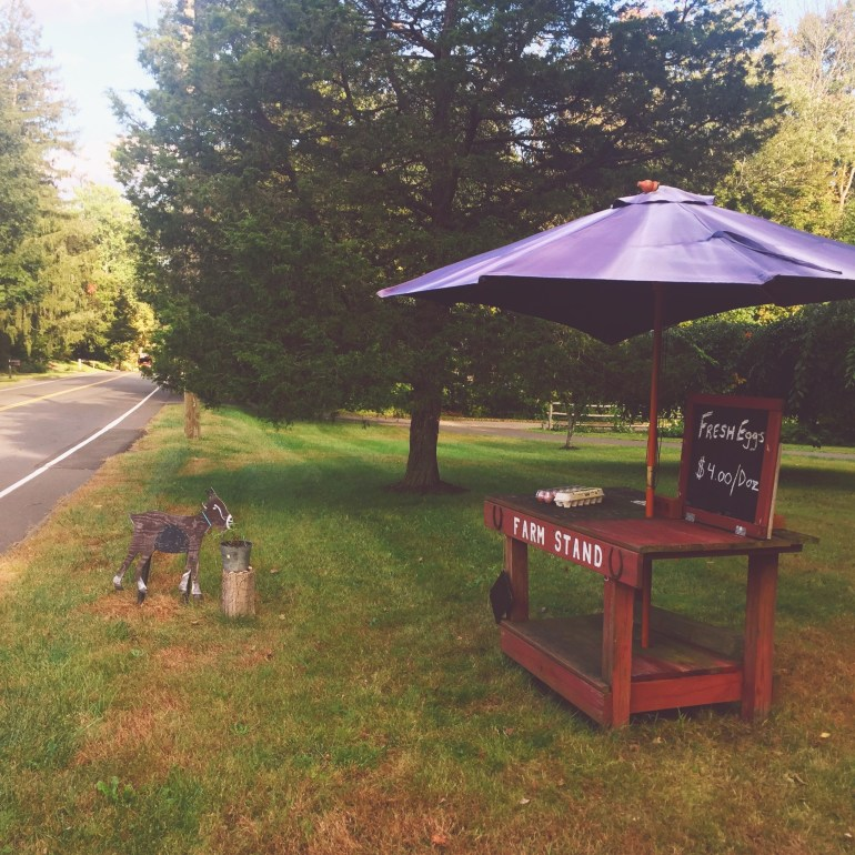 farm stand with goat sign