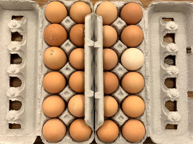 Local brown eggs fresh from the Field View Farm Orange, CT