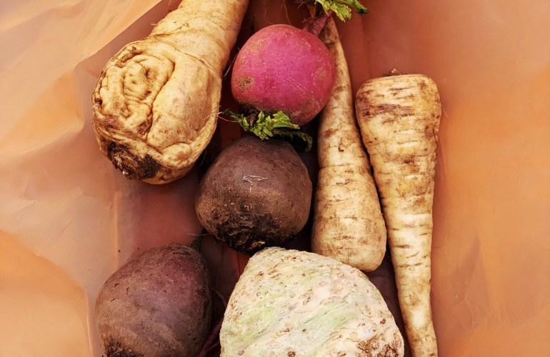 Orange bag full of farm stand fresh root vegetables beet radish parsnip celeraic