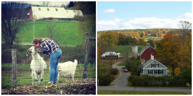 Inn at Valley Farms, Walpole, Nova Hampshire |  Farm Stay EUA