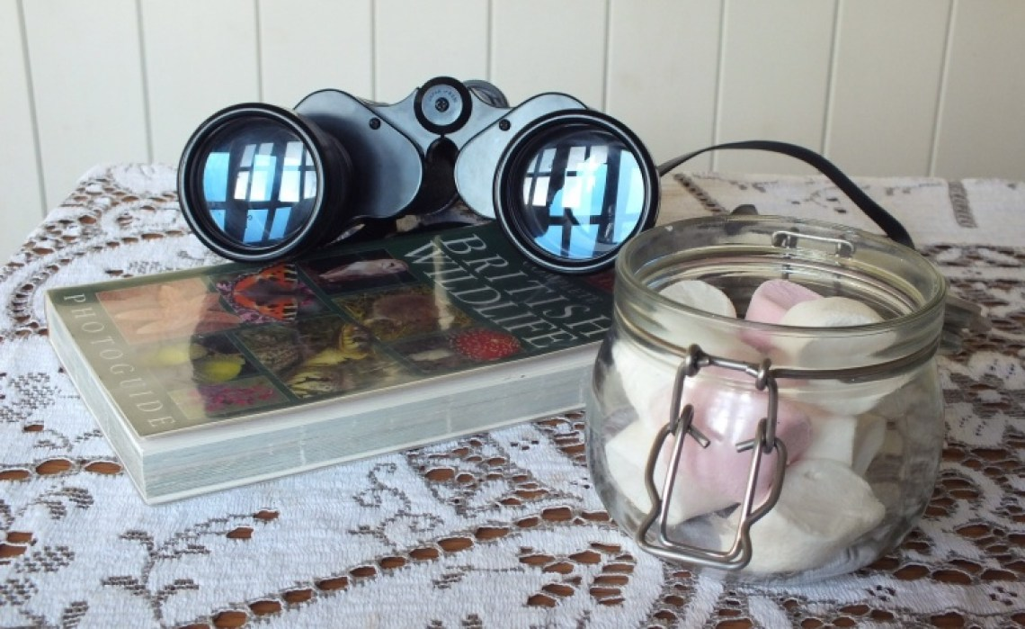 Binoculars with a British wildlife book and jar of marshmallows