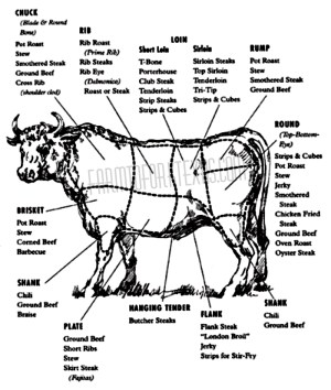 Beef Cuts Diagram | farmtoforktexas