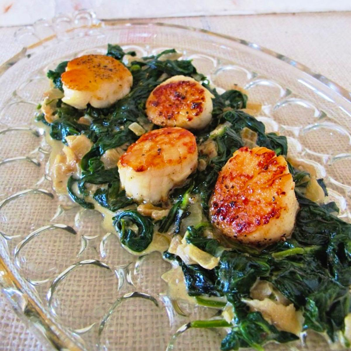 Seared scallops on Creamed Spinach