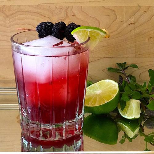 Low Carb Blackberry Mojito