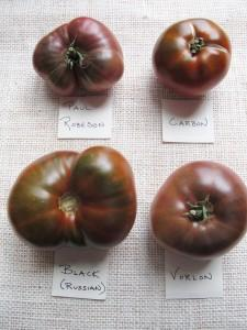 A variety of black heirloom tomatoes and a description of their flavor profile