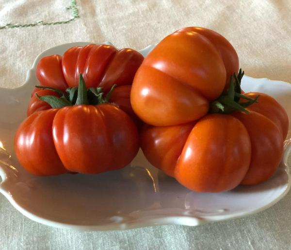 Two costoluto heirloom tomatoes on a plate