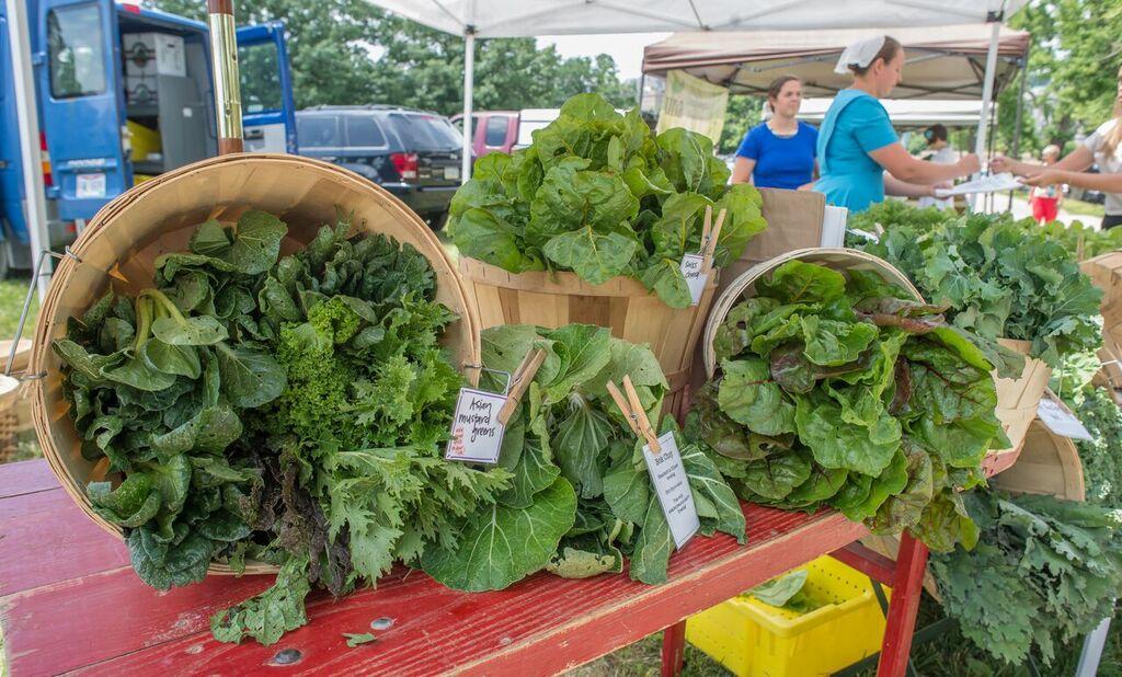 CSA Fair Farms Announced