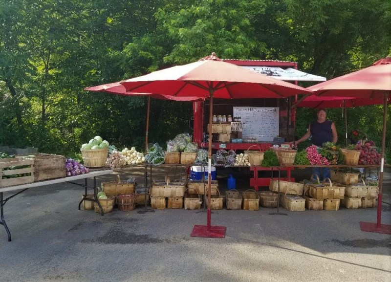 Sarver's Hill Organic Farm