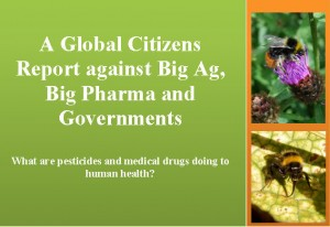 global citizen report