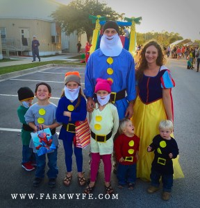 A decade of family-themed costumes by farmwyfe.com