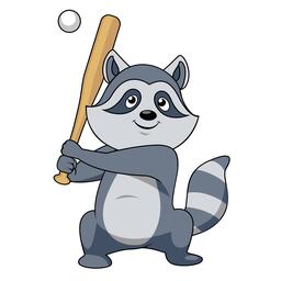 raccoon playing baseball