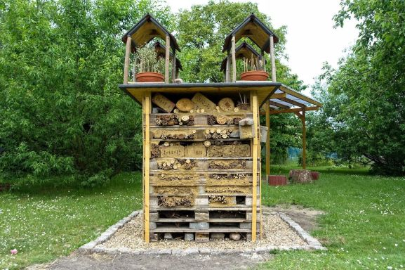 deluxe-insect-hotel-1624907