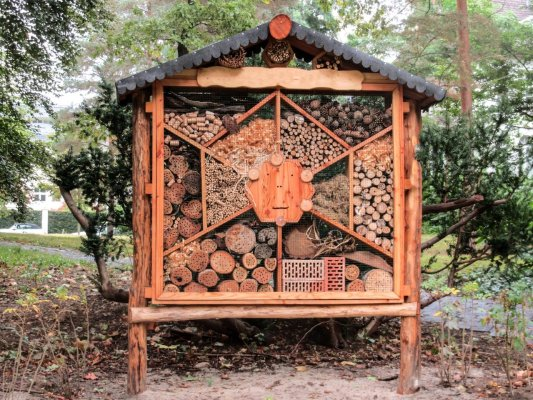 insect-hotel-1616986