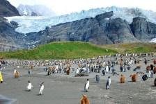 Glaciers (www.expatdailynews.com)