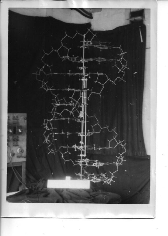 original watson crick model