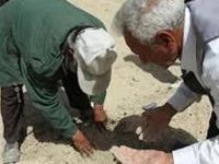 تجمع کشاورزان شرق اصفهان در اعتراض به عدم تامین حقآبه