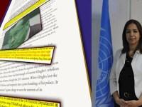سخنگوی پیشین یونامی در عراق: تنها مأموریت کوبلر در عراق اجرای خواسته مالکی برای بستن کمپ اشرف