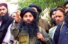 نماینده مجلس، استاد مردم شناسی: طالبان یک  جنبش اصیل است!!!!