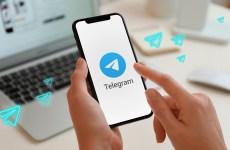 ۸۱درصد از ترافیک کانالها در تلگرام در اختیار ایرانی ها است