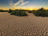 گزارش فارینپالیسی: خاورمیانه در سالهای آینده عملا غیرقابل سکونت خواهد شد!