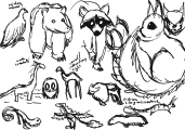 Critters_creatureconcepts