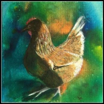 Hønen i sol 30 - 30