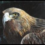 Ørnen i akryl maling