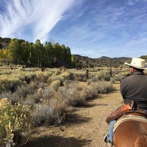 Flying M Ranch is on the 160 acre Halfway property, 10 acres of meadow are partially fenced, and there is an off-grid cabin with a newer tin roof in a beautiful setting below Aspen groves.