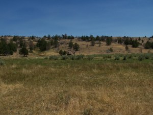 Observation Peak in Lassen County, CA, is a property located about 2.5 hours north of Reno, NV.
