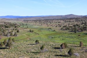 Observation Peak in Lassen County, CA, acreage could be used for ranching, homesites or hunting.