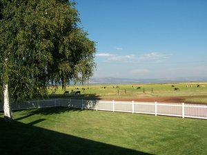 The Island Ranch The Island Ranch is one of the most ecologically important ranches.