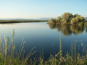 The Island Ranch is known for trout fishing and also features larger game.