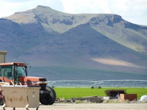 Buckskin Farms Ranch is close to Winnemucca and Boise and less than 1/4 mile from Hwy 95.