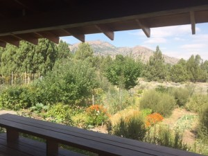 Cherry Creek Nature Retreat features native landscaping and a lush cottonwood riparian corridor along Cherry Creek which runs seasonally through the property